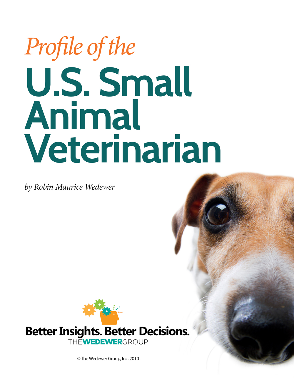 profile of small animal vet in us